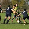rugby noceto - amatori rugby
