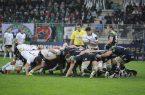 zebre-rugby-mischia
