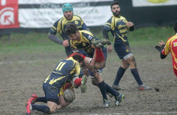 rugby noceto